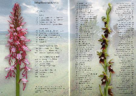 Orchideen der Rhoen
